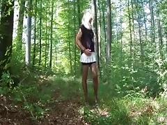 Ein Ausflug in den Wald