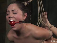 Bondage, BDSM, Bondage, Fetish, Punishment, Slave