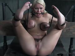 All, BDSM, Big Tits, Blonde, Domination, Mature