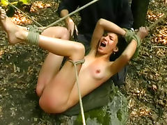 Stripped and caned in the woods
