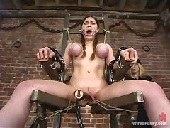 Brutal, BDSM, Bondage, Brutal, Extreme, Humiliation