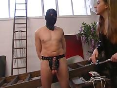 All, BDSM, Blonde, Brunette, Humiliation, Threesome